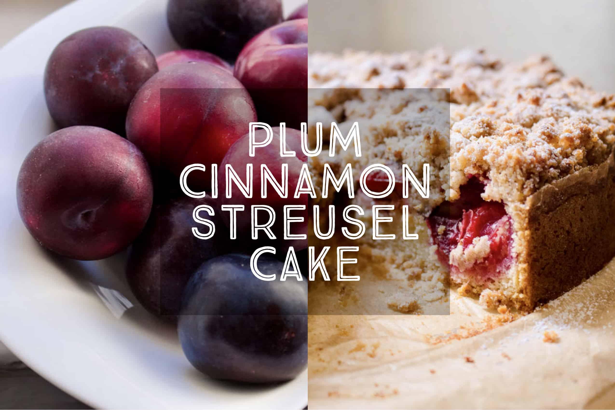 Plum Cinnamon Streusel Cake