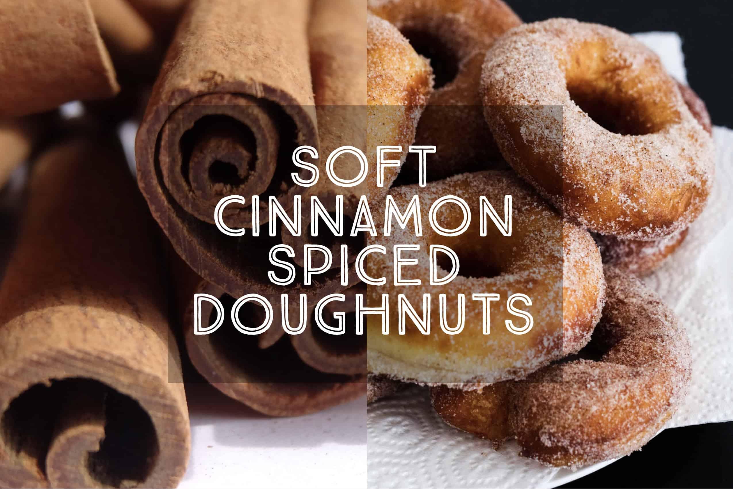 Cinnamon Spiced Doughnuts