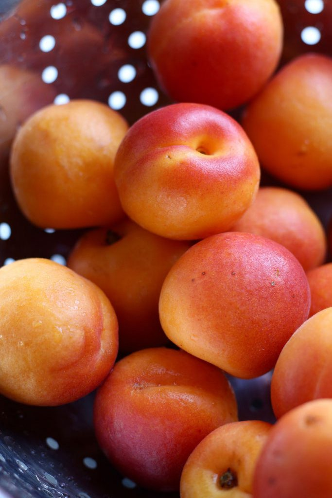 Apricots for Summertime Apricot Cake