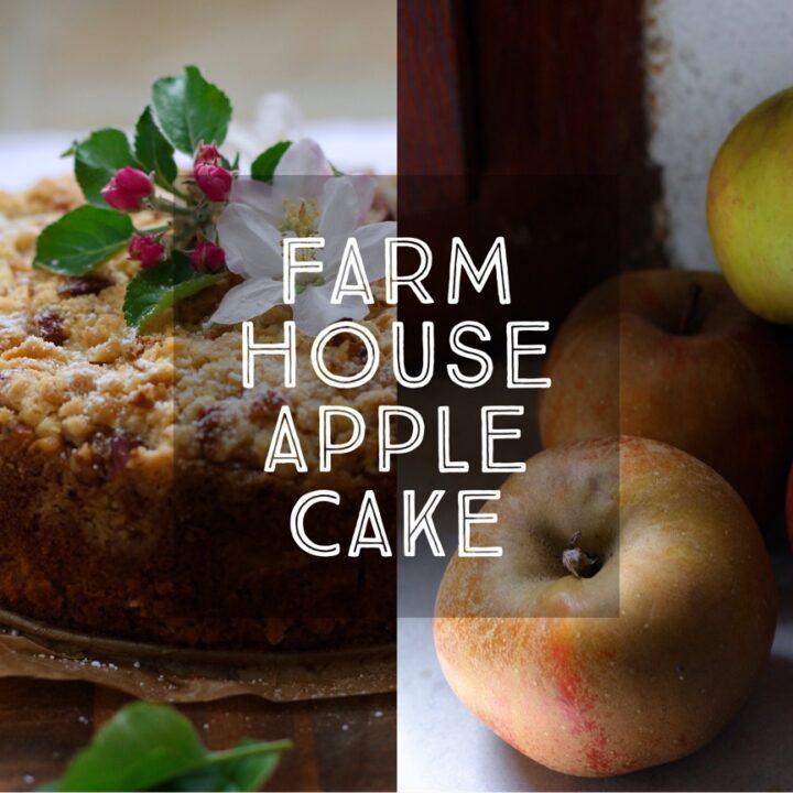 Farmhouse Apple Cake