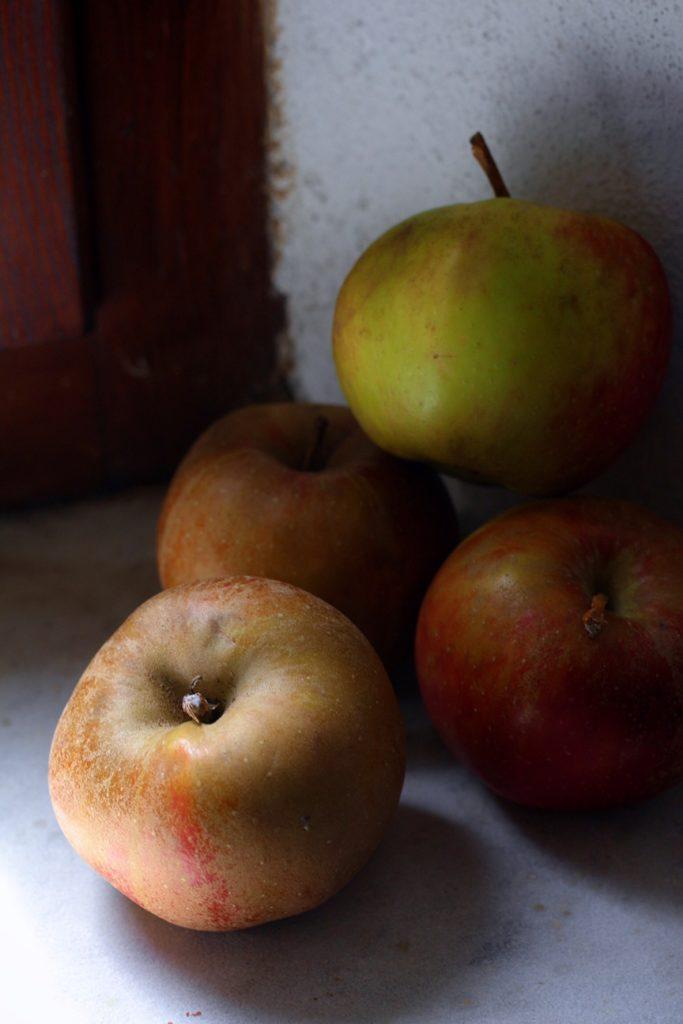 Boskoop Apples